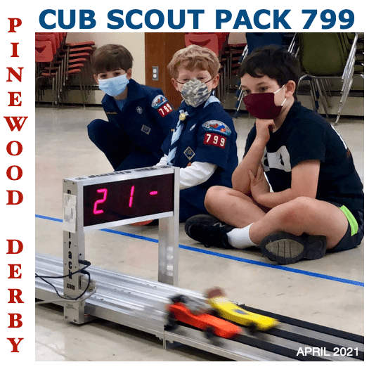 Scout & Pack 799 News